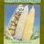 ข้าวโพด อาร์ยู104 (เทียนลาย) thumbnail 1