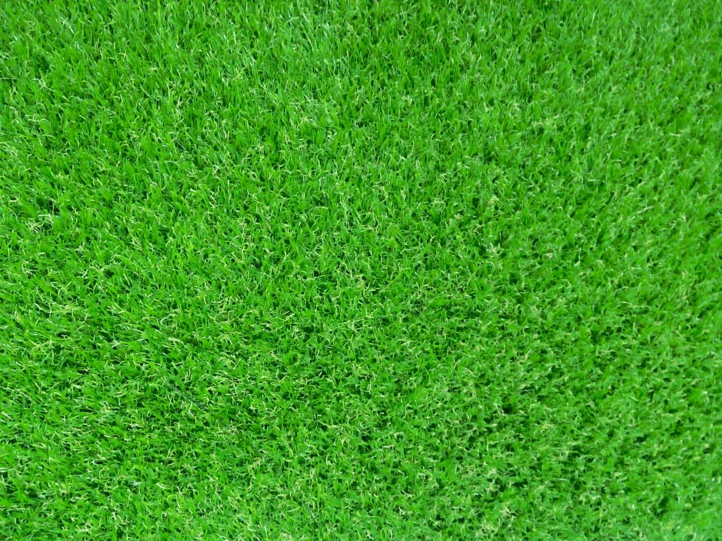 หญ้าเทียม รุ่น 2 cm.สี Autumn