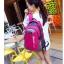 NL06 กระเป๋าเดินทาง สีชมพู ขนาดจุสัมภาระ 28 ลิตร thumbnail 44
