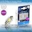 Philips X-treme Vision Festoon LED 30mm 6000K thumbnail 1