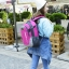 NL06 กระเป๋าเดินทาง สีชมพู ขนาดจุสัมภาระ 28 ลิตร thumbnail 32
