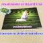 กรอบลอยผ้าแคนวาส 16x24 นิ้ว thumbnail 1